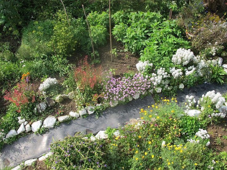 Grădină mică la munte cu flori și legume