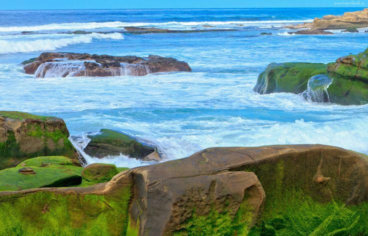 Morze, Kamienie, Skały
