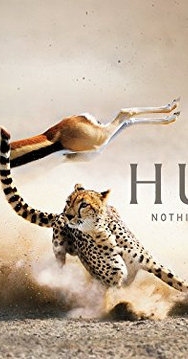 The Hunt  1h   Documentary   TV Mini-Series (2015– )   7 episodes   This major landmark series looks in detail at the fascinating relationship between predators and their prey. Rather than concentrating on 'the blood and guts' of predation, the series looks... See full summary » Stars: David Attenborough, Damien Boisseau