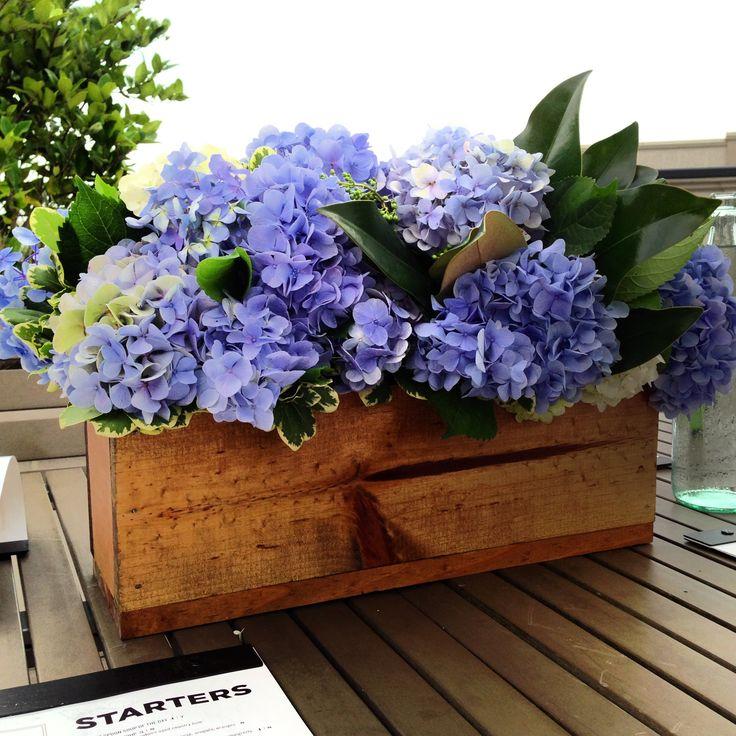 Hydrangeas in wooden box