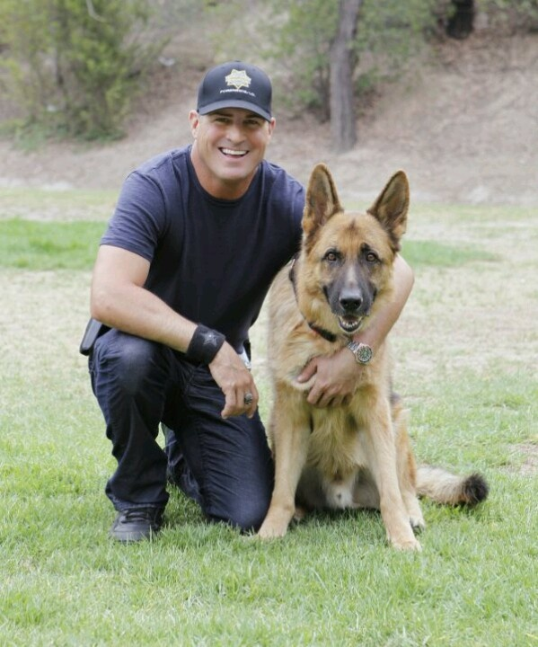 20 best K9 Units images on Pinterest Police dogs, German - k9 officer sample resume