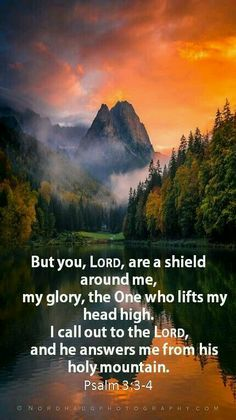 KJV .... Psalm 3:3-4 W But thou, O Lord, art a shield for me; my glory, and the lifter up of mine head. I cried unto the Lord with my voice, and he heard me out of his holy hill.
