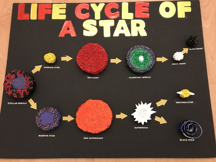 Life Cycle Of A Star Bella S Science Project Diy
