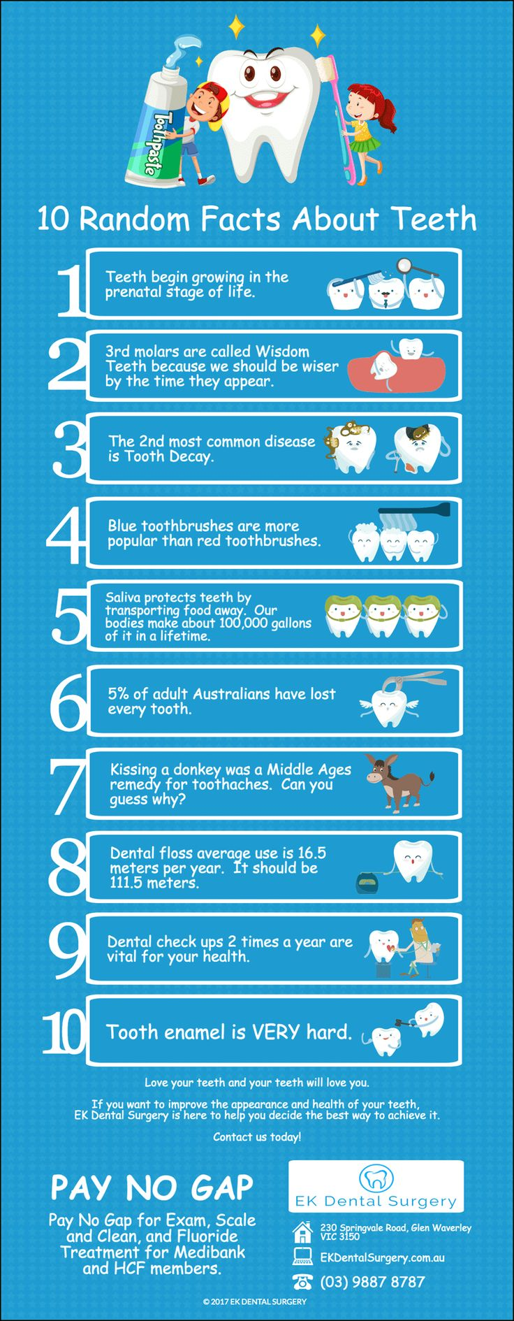 10 Random Facts About Teeth ekdentalsurgery.com.au