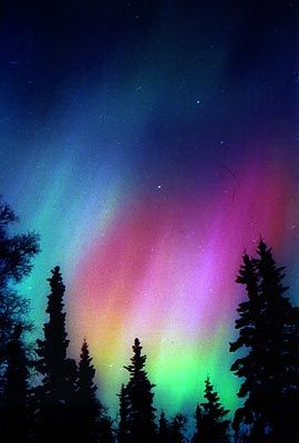 The northern lights of Alaska ...not my picture did not have the camera for it, but they also move like a wave in the sky.