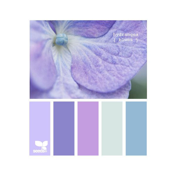 Design Seeds ❤ liked on Polyvore featuring colors, backgrounds, design seeds, color palettes and colours