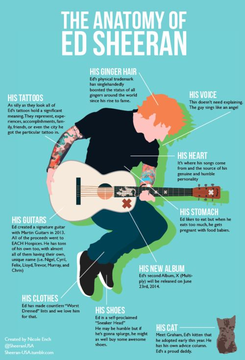 showing Ed Sheeran as scruffy, humble, laid back, generous (guitar proceeds going to charity), caring, down to earth, relatable