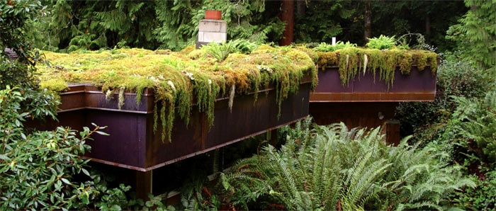 Archiphyte no-soil living roofs, planted with mosses and lichensNo Soil Living, Living Wall, Outdoor Living, Living Spaces, Living Roof