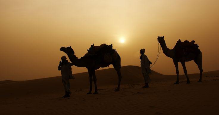 Zand duinen, Jaisalmer (gemaakt in Rajasthan)
