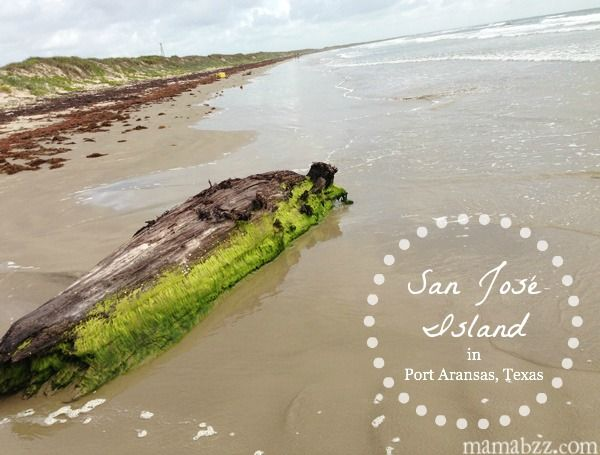 A Weeks Ago I Wrote About Port Aransas Beach In Texas