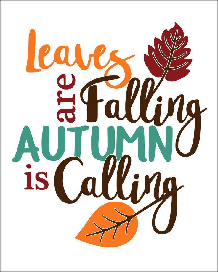 Best 25+ Cute Autumn Quotes Ideas On Pinterest