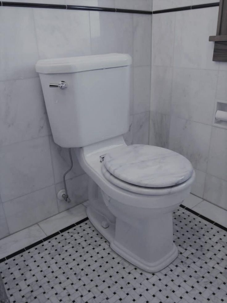 How to Fix a Leaking Toilet Tank in 5 East Steps Toilet
