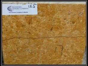 J Gold Fosil marble We are showing you very good quality Indian Marble, Which is basically used in counter tops, table top, floor designs, wall cladding, kitchen top etc. We are showing you product with its Details and latest price.