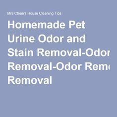 Homemade Pet Urine Odor and Stain Removal-Odor Removal