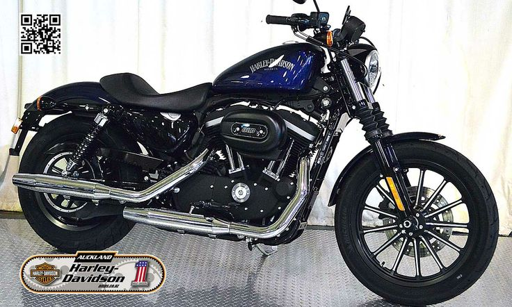 2013 HARLEY-DAVIDSON XL883N in Big Blue Pearl At Auckland Motorcycles & Power Sports,  New Zealand www.amps.co.nz