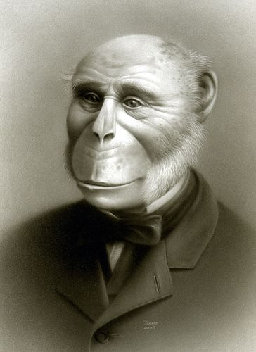 "Karl the Humanzee - Travis Louie. Karl was discovered working for an eccentric vision-impaired aristocrat in 19th century England. He didn't want to interrupt his employer's ""perfect world""--he never mentioned on his application that he was part chimp or ape-like in any way. He just displayed his more human side and followed her wishes. Louie creates portraits from imaginary Victorian-era photography studios whose clientele was restricted to human oddities and things that go bump in the…"