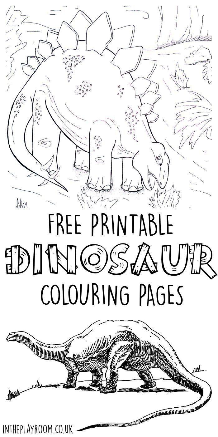 medium resolution of 10 dinosaur worksheets elementary