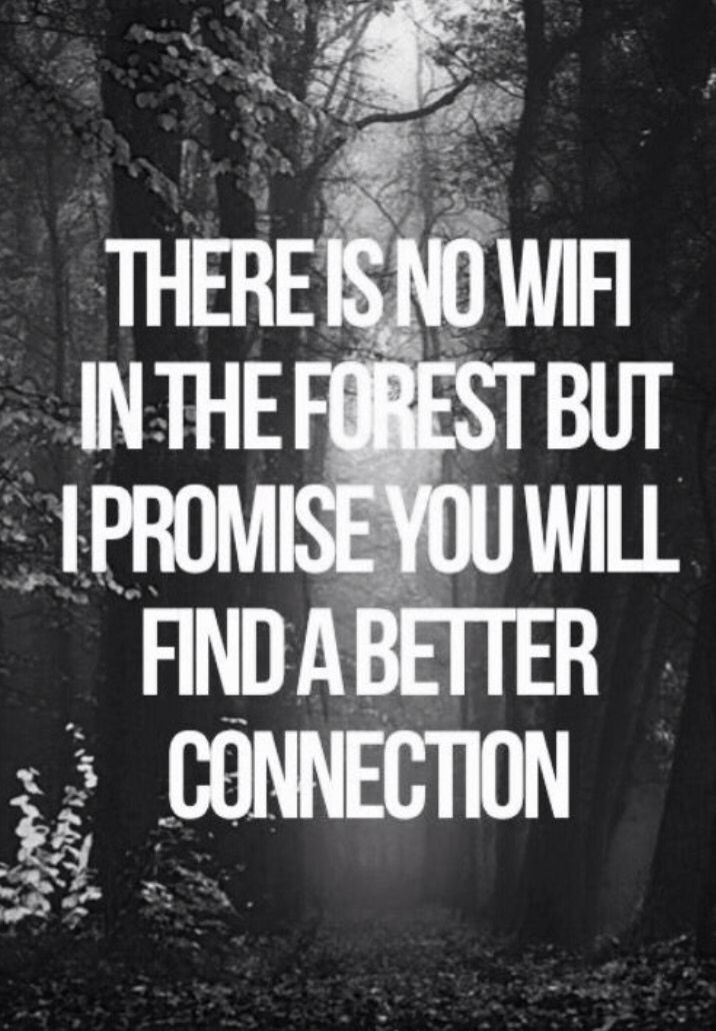 The type of connection i like. I miss our nature treks! Hon, let's restart the sessions when you're back k!