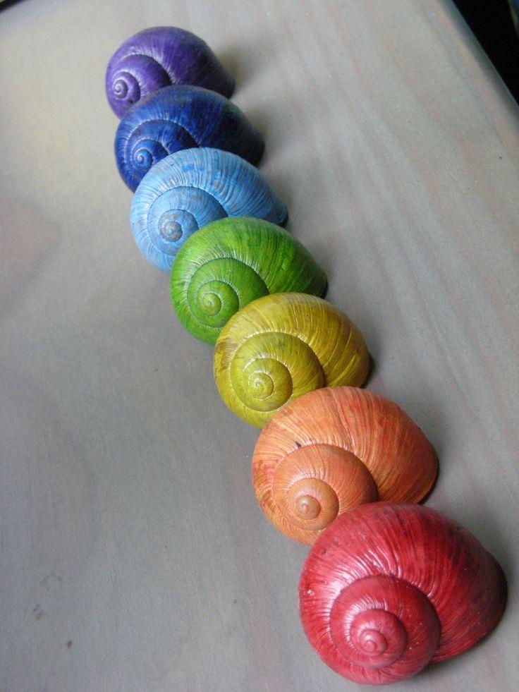 Šnečí větrohra v barvě čakry Šnečí ulity tónované do odstínů fialové, modré, zelené, žluteé, oranžové a červené. Kolorováno minimálně ve třech vrstvách. Otěruodolné. Nelakováno. Navlečeno na 100% lněný provázek. Na každé šňůrce je čtrnáct ulit, zachováno pořadí barev. Uprostřed nechána volná část bez ulit, aby bylo možno větrohru přehodit přes ...