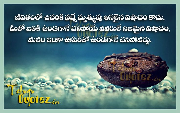 17 best images about life quotes in telugu on pinterest