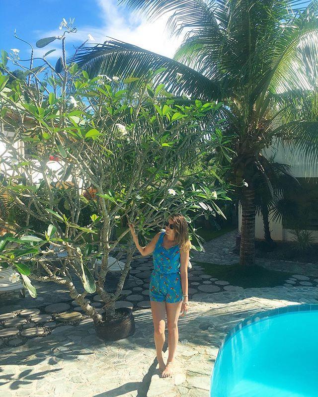 Feeling tropical here in Bohol 🏝 #travel #travelblog #travelblogger #travelwriter #travelphotography #wanderlust #passportready #backpackerstory #backpacking #ilovetravel #travelgram #instatravel #instago #instagood #instadaily #tourism #budgettravel #igtravel #traveltheworld #wearetravelgirls #girlswhotravel #solotravel #shoestringtravel #exploretheworld #traveltheworld #sheisnotlost #bohol #philippines