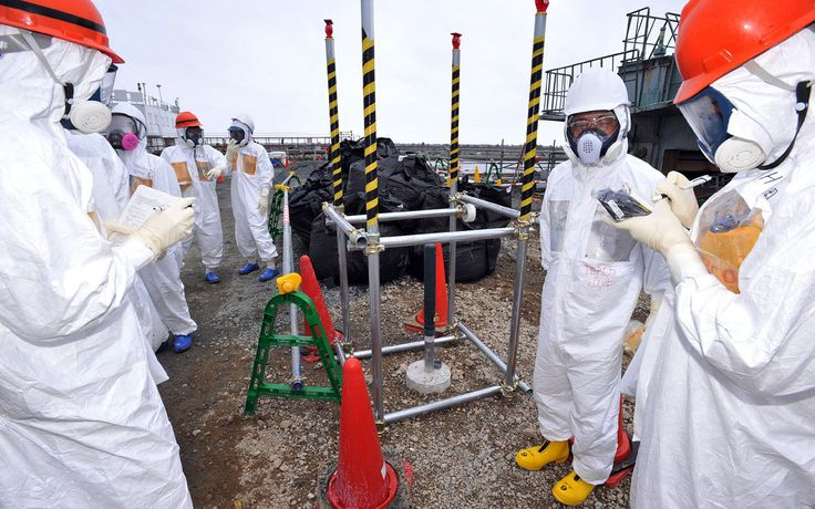 UN questions Japan estimates of Fukushima worker radiation doses  October 12, 2013 12:05PM ET Japanese authorities may have underestimated ra...