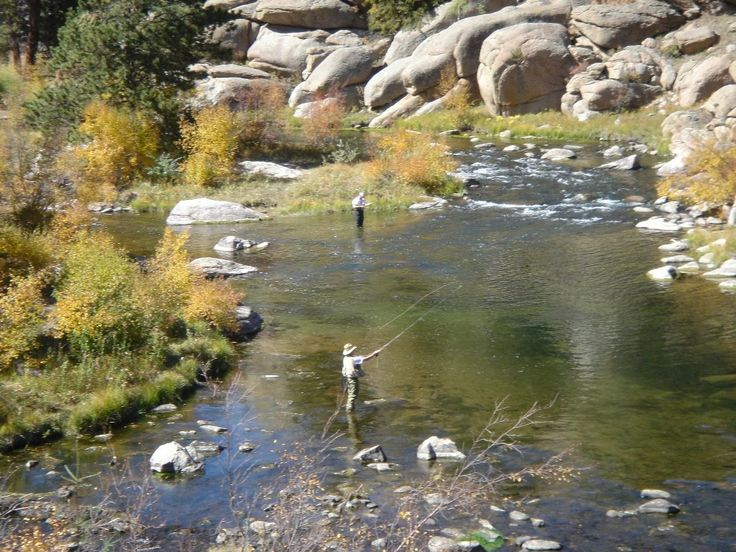 Eleven mile canyon fishing