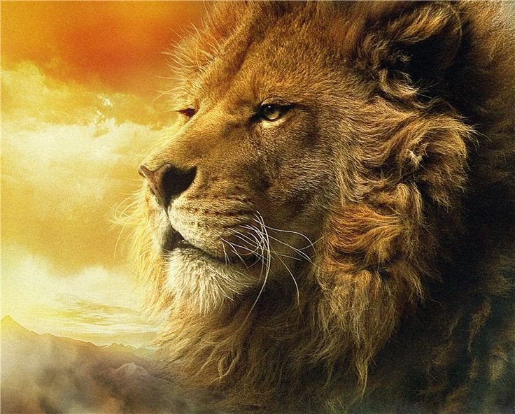 Free Shipping! Fresh Look Golden Lion Modern Wall Painting