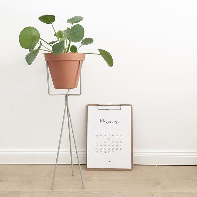217 besten plants and flowers blogstlove bilder auf pinterest anbau von gem se ausdrucken. Black Bedroom Furniture Sets. Home Design Ideas