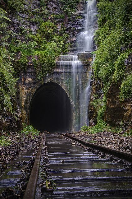 Australia awesome picture Train road wow túnel Abandoned Falls | Sydney, Australia by Cat. M on Flickr