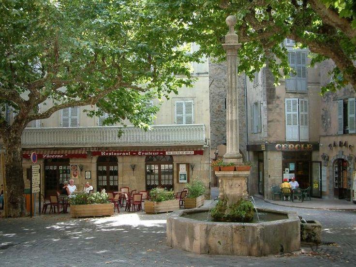 Bargemon: Place ombragée avec fontaine, platanes (arbres), terrasses de cafés et maisons du village - France-Voyage.com
