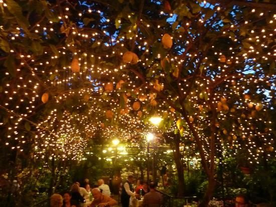 love the fairy lights above...
