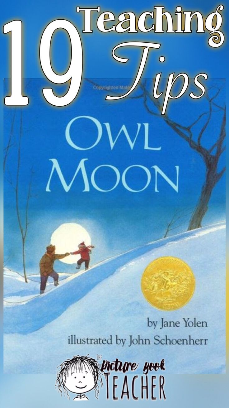 Use these teaching tips to help inspire new questions and or ideas to make your read-aloud of the book Owl Moon by Jane Yolen more meaningful.