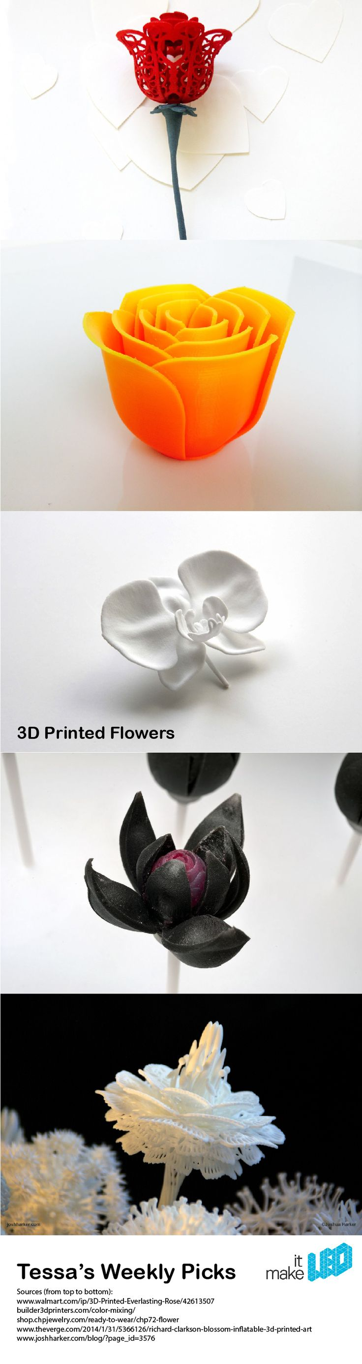 A bouquet of 5 different 3D printed flowers