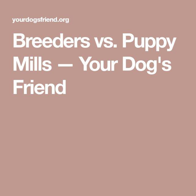 Breeders vs. Puppy Mills — Your Dog's Friend