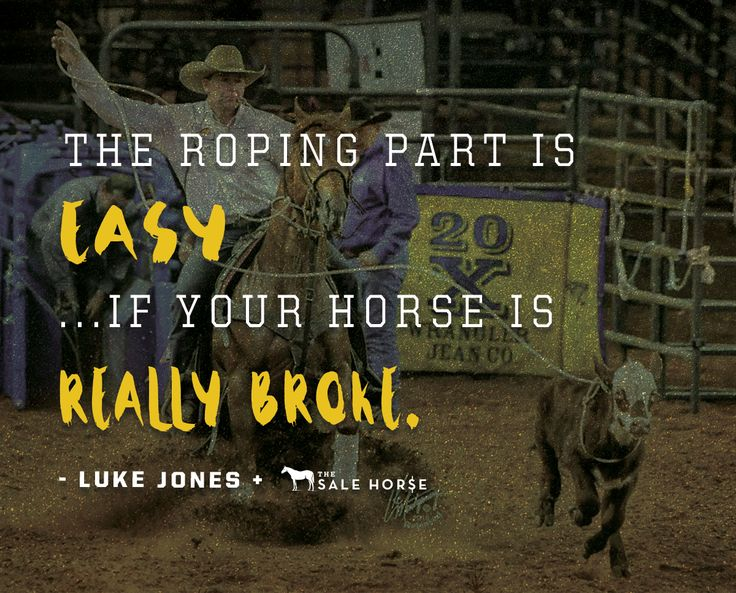 How to shop for a cowhorse/rope horse crossover: trainer Luke Jones shares what he's looking for when training horses that can succeed in multiple events.