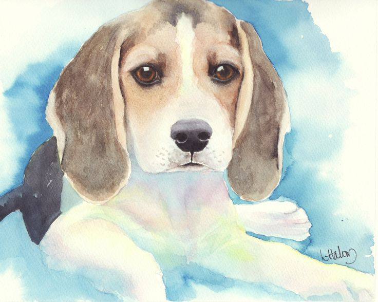 Beagle Pup, A High Quality PRINT of my Original painting