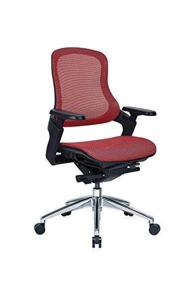 HESSEN Mid Back Ergonomic Mesh Office Chair With Adjustable 2D Arms