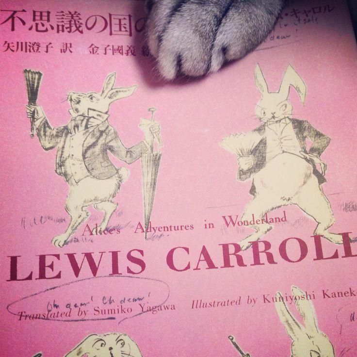 【新入荷】ルイス・キャロルの「不思議の国のアリス」を入荷しました。チョッキを着たウサギを追いかけて穴に飛び込むと…。今もなお世界中で親しまれている小説を、ぜひ古書店Bookshop Rockyでお求めください。--------- #today #love #shop #book #used #good #cat #古本 #にゃんこ #ねこ #ほん #かわいい #だいすき #小説 #本 #お知らせ #読書 #アリス #不思議の国のアリス