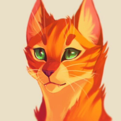 On Instagram there is a post called how bright can Firestar get? And it is this picture but I reposted it and it doesn't even look like a cat anymore