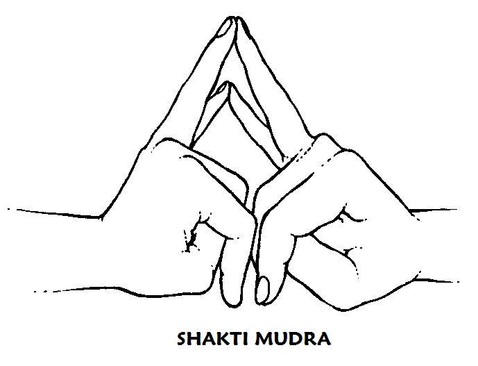 #shakti #mudra Según lo necesite o 3 veces al día durante 12 minutos. Fortalece el impulso respiratorio en la zona inferior del pecho; la respiración se percibe, multiplicada, en el abdomen. Tiene un efecto relajante y favorece el sueño por la noche.