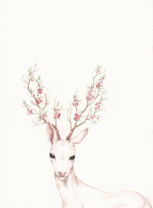 Deer Illustration