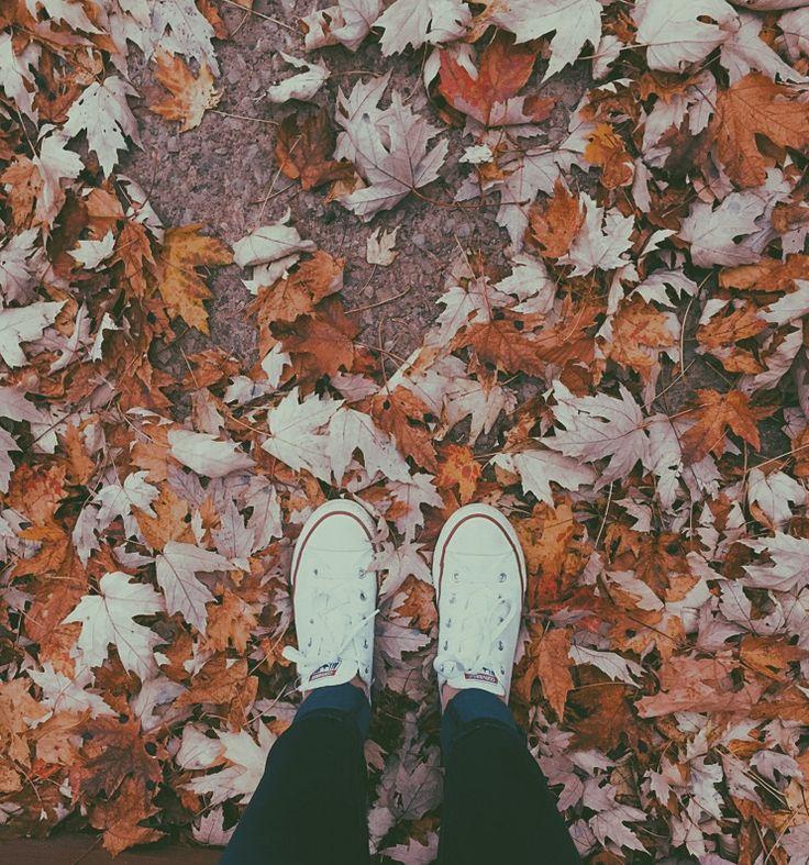 Photography Tumblr Fall