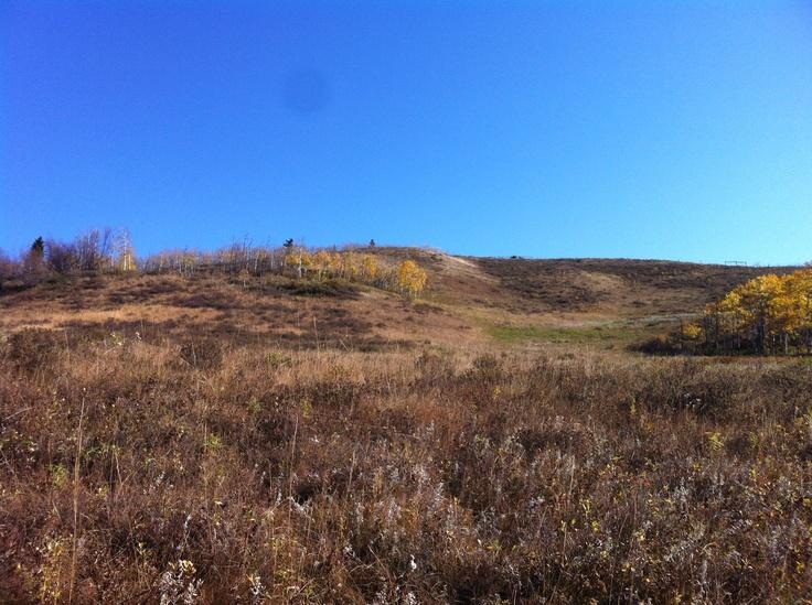 West of Calgary