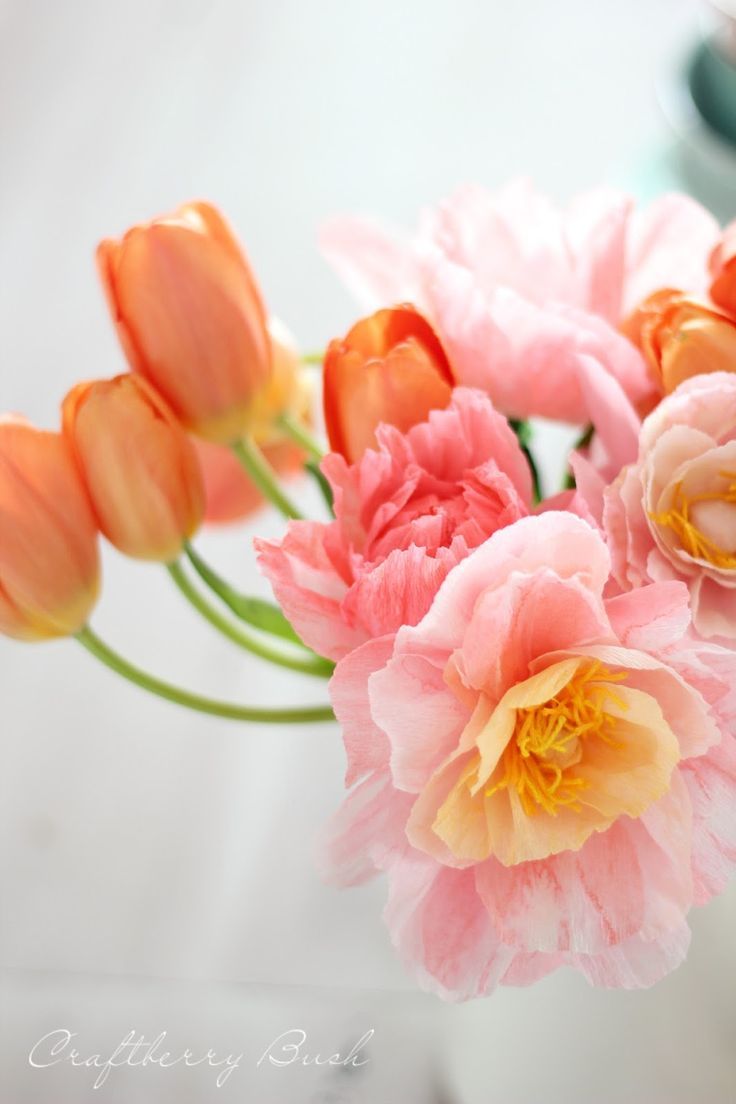 Crepe paper flowers on pinterest explore ideas with crepe