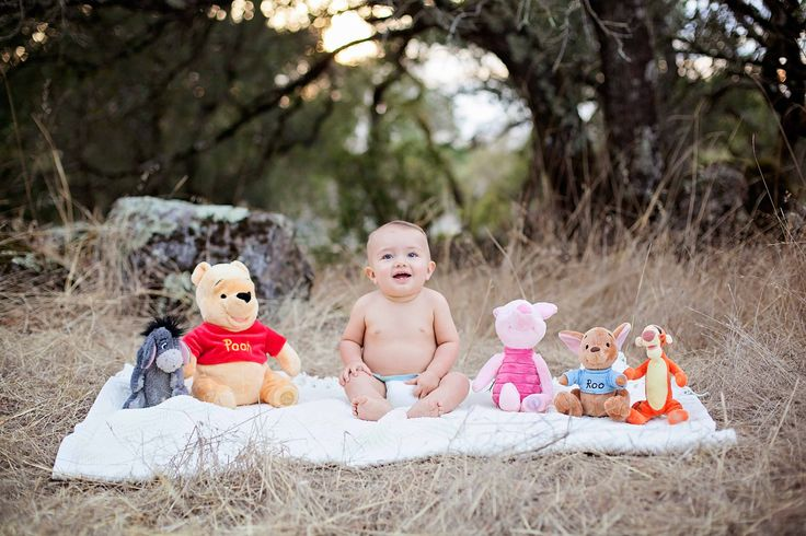 Sonoma County Mini Shoots, first birthday photo ideas, first birthday invitations, winnie the pooh themed, santa rosa photographer, 1st birthday photography