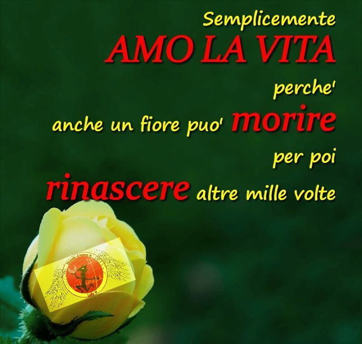 CLICCATE MI PIACE SULLA NOSTRA PAGINA FACEBOOK CLICK ON LIKE OUR FACEBOOK PAGE http://ift.tt/2k9jhAD
