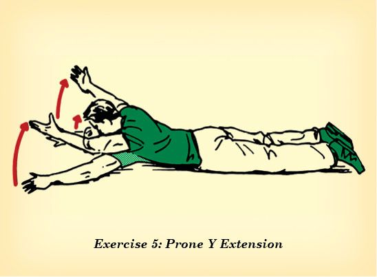 Image result for prone y raises