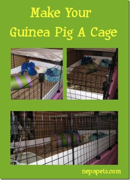 Nice easy directions. Thrifty Thursday- Make Your Guinea Pig A Cage