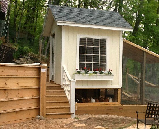 19 best images about chicken coops on pinterest for Small chicken coop plans and designs ideas